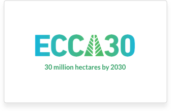 This is the ECCA30 logo.
